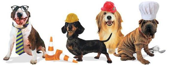 dogwork